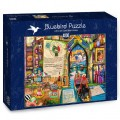 bluebird-puzzle-life-is-an-open-book-venice-puzzle-4000-pieces.79117-2.fs.jpg