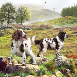 Otter House 1000 - Spaniels On The Moor