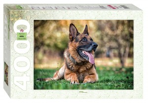 Step Puzzle 4000 - German Shepherd