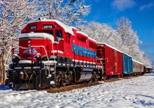 BlueBird 1500 - Red Train In The Snow