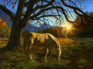 SunsOut 1000 - Karla Mann - Pastoral Sunset