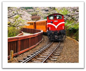 Pintoo  500 Plastic Puzzle - Forest Train in Alishan National Park, Taiwan