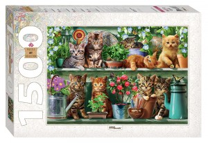 Step Puzzle 1500 - Kittens in the Shelf