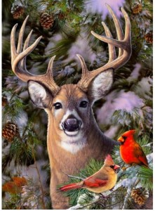 Cobble Hill / Outset Media  500 XXL Pieces - One Deer Two Cardinals