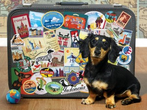 Cobble Hill / Outset Media  500 XXL Pieces - Dachshund 'Round the World