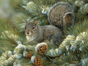 Cobble Hill / Outset Media  275 XXL Pieces - Gray Squirrel