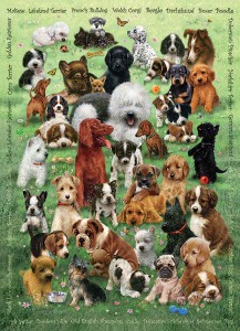 Cobble Hill / Outset Media  350 XXL Pieces - Puppy Love
