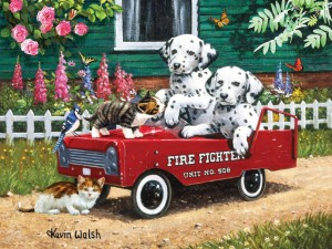 SunsOut 300 - Kevin Walsh - Fireman Friends