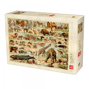 D-Toys 1000 - Encyclopedia Wild Animals