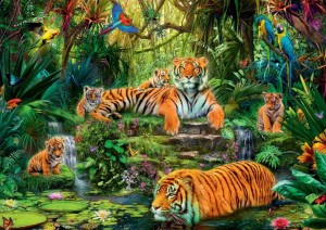 Jumbo 1000 - Family of tigers at the Oasi