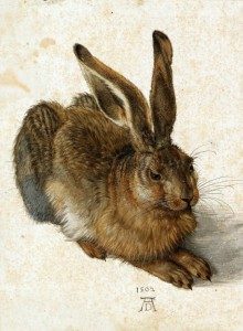 Grafika 2000 - Albrecht Dürer - The Rabbit, 1502