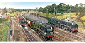 Gibsons 636 - Panoramic - New Forest Junction