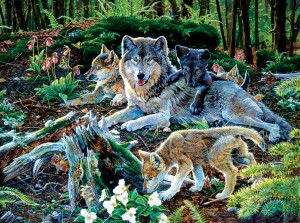 SunsOut 500 - Jan Martin Mcguire - Forest Wolf Family